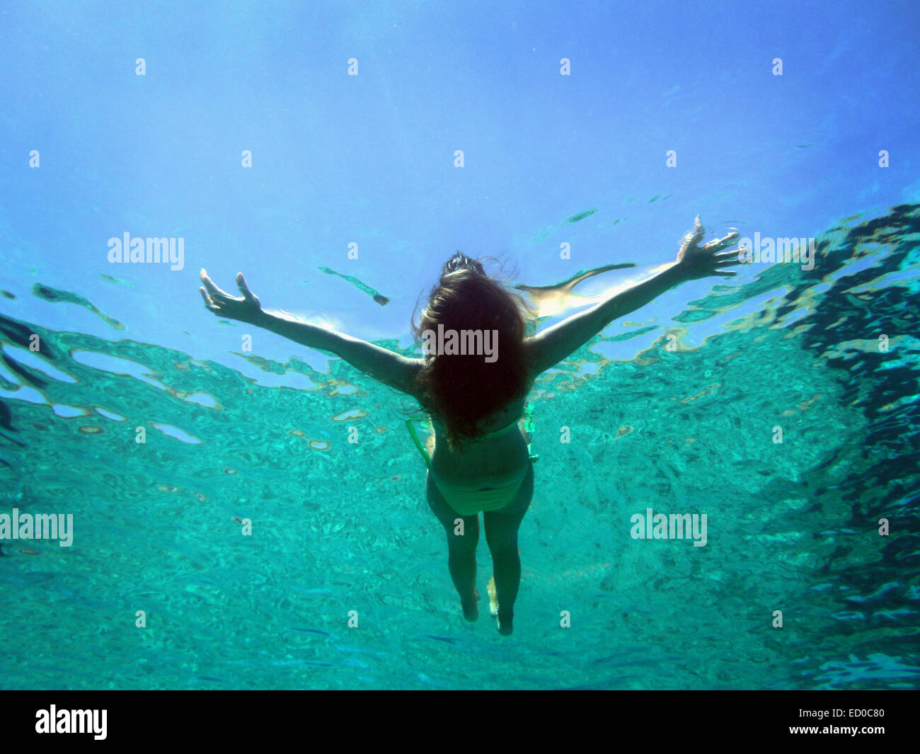 Greece, Dodecanese Prefecture, Chalki, Underwater view of woman floating on water - Stock Image