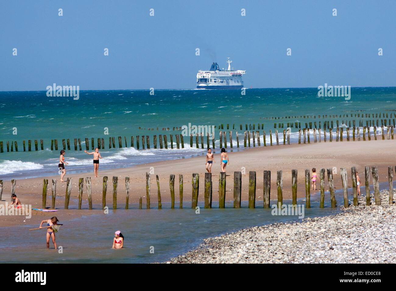 France, Pas de Calais, Sangatte, holidaymakers and ferry company P&O performing the Calais Dover link - Stock Image