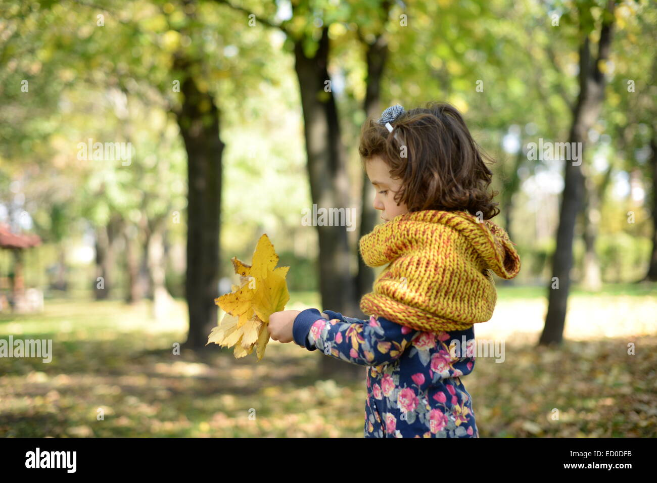 Pretty little girl (4-5) playing in park - Stock Image