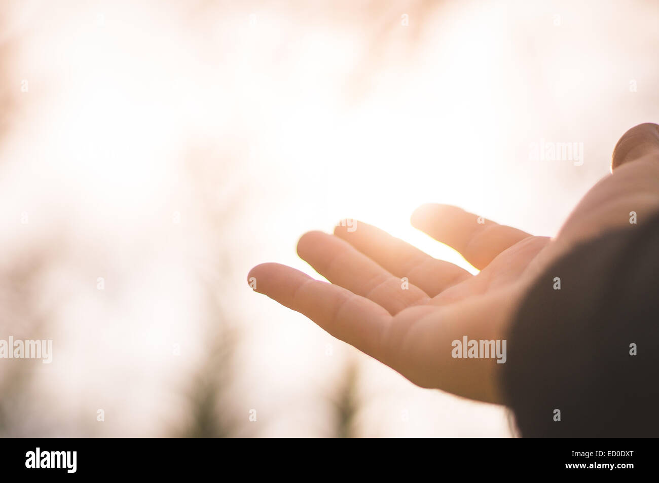 Person hand in front of sunlight Stock Photo