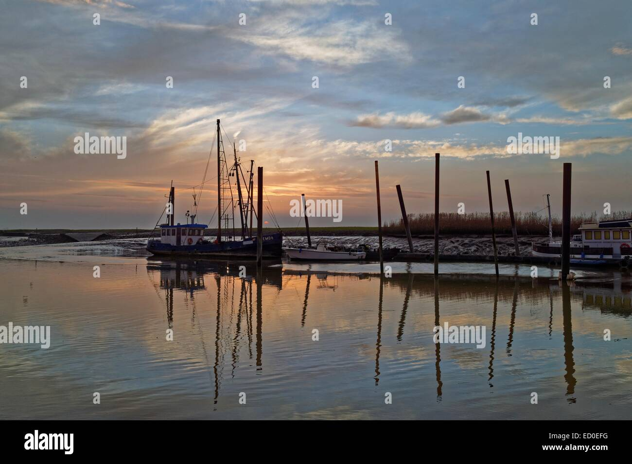 Germany, Petkum, Windless evening in small harbor - Stock Image