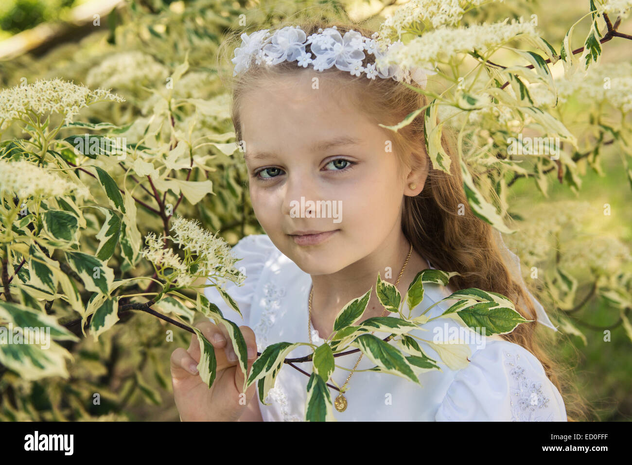 First communion girl (8-9) between leafs - Stock Image