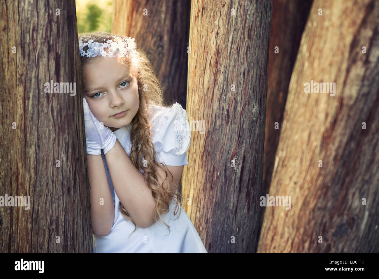 First communion girl (8-9) leaning against tree - Stock Image