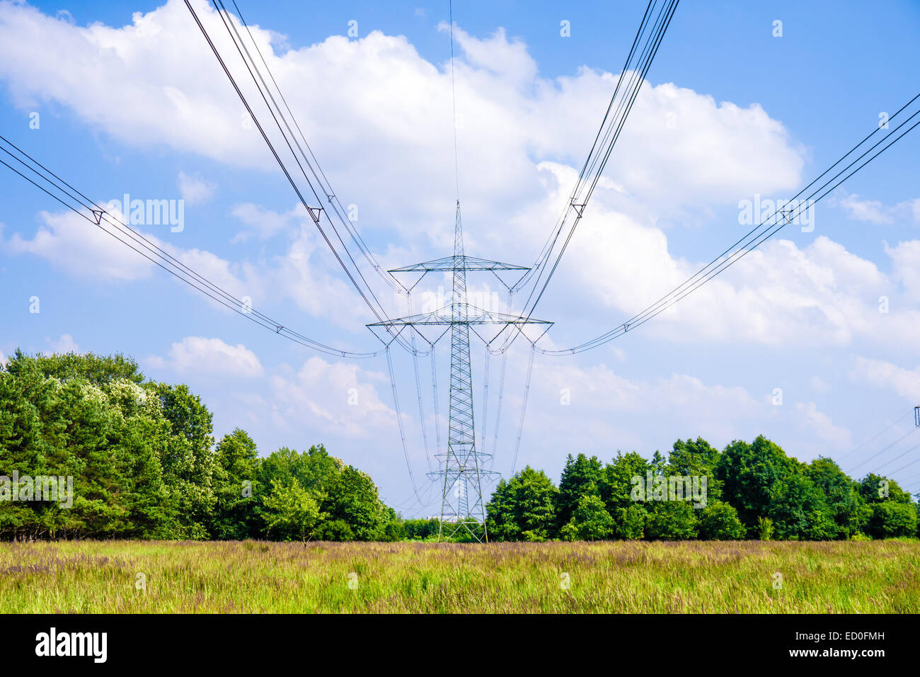 electrical tower in landscape in summer time Stock Photo