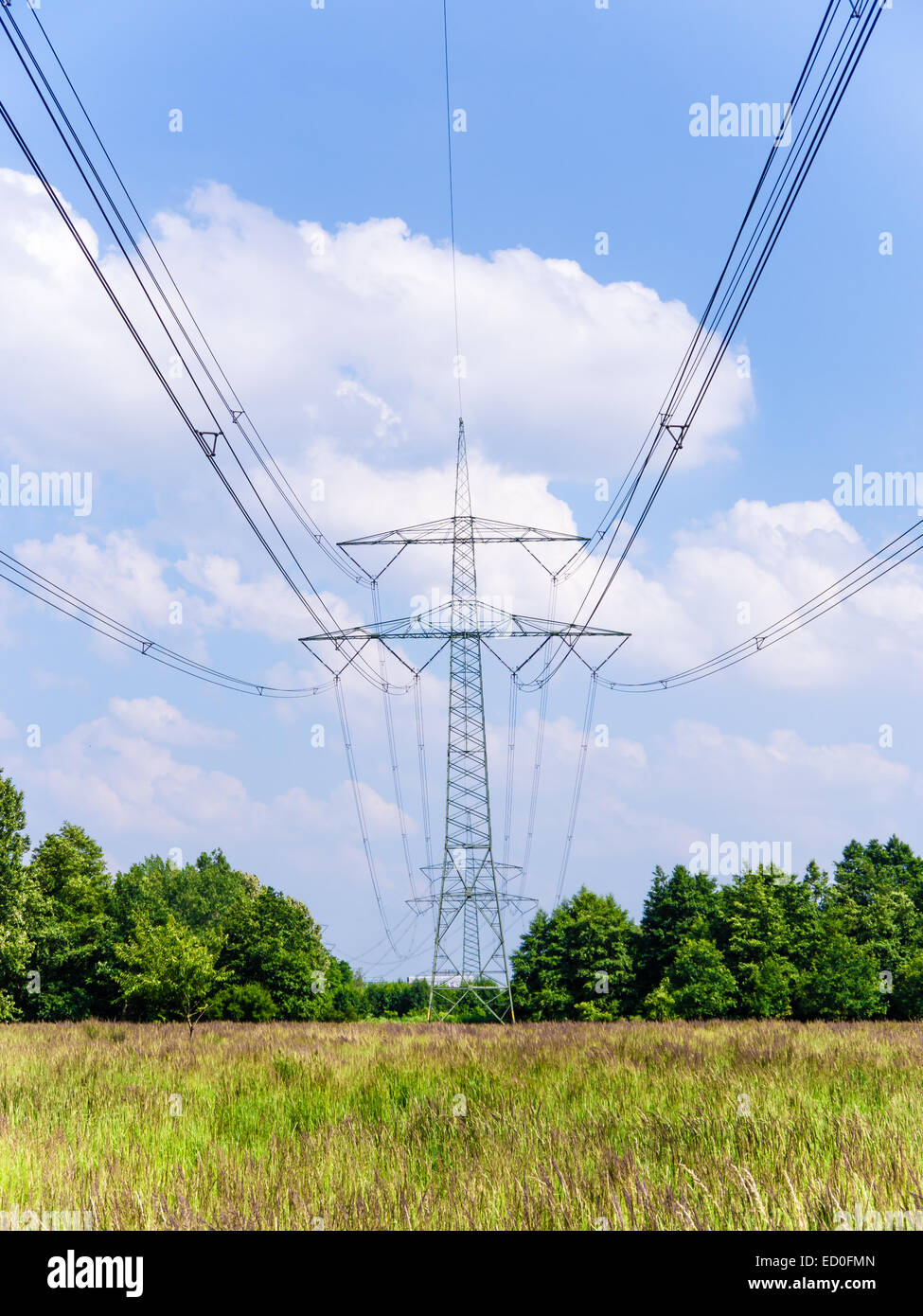 electrical tower in landscape with grasses and trees Stock Photo