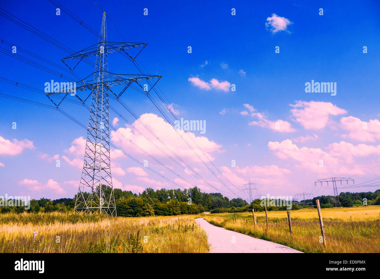 electrical tower in lanscape with blue violet sky in summer Stock Photo