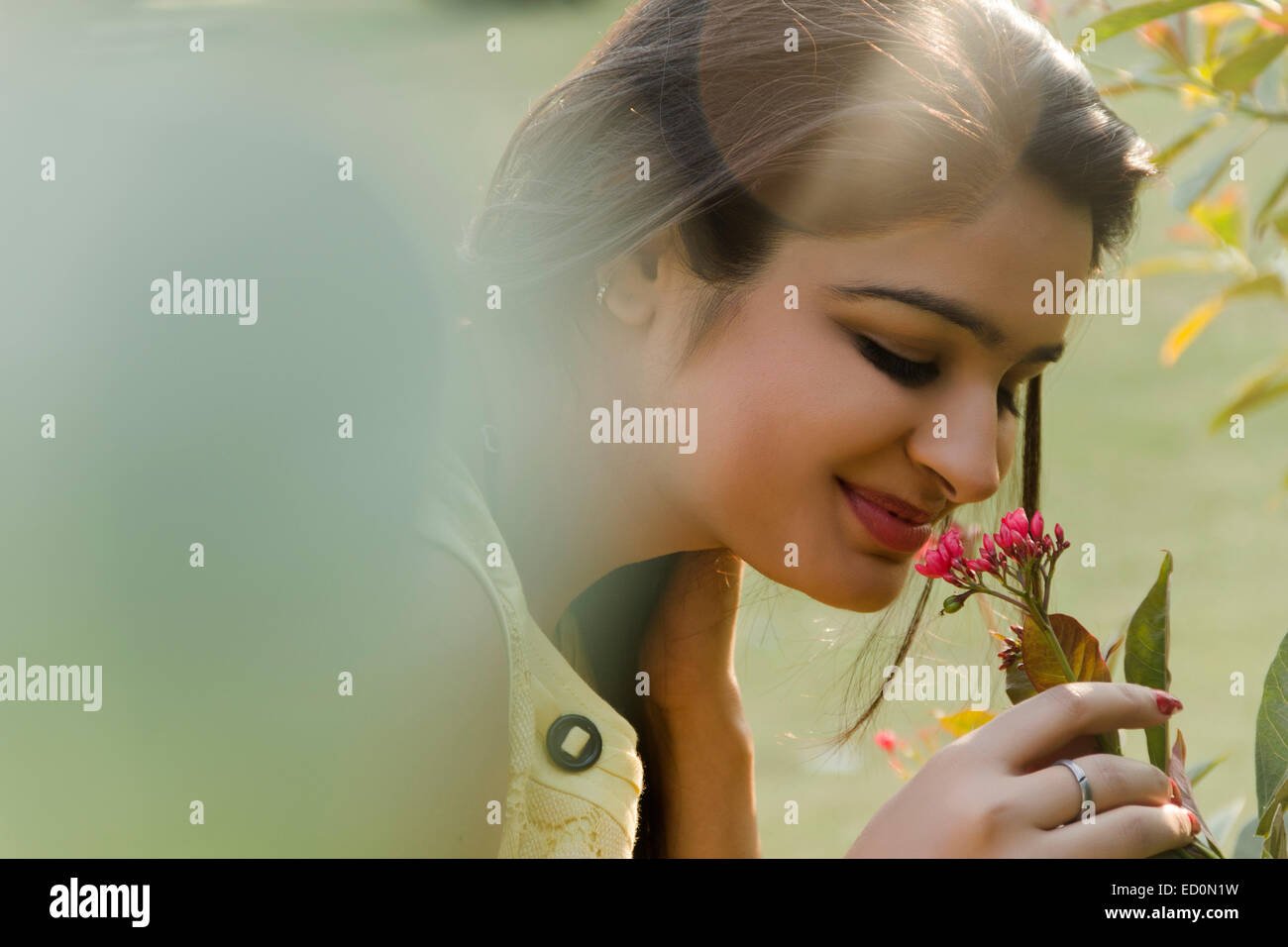 Indian Lady Garden Plant Life Stock Photos & Indian Lady Garden ...