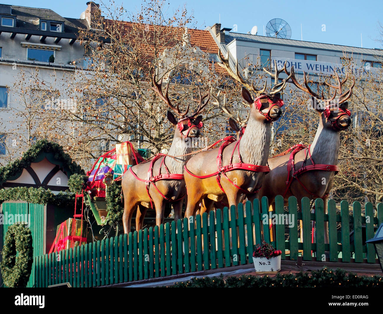 The reindeer and sleigh are ready in the Christmas market  (Weihnachtsmarkt) in the Rudolfplatz, Cologne, Germany, Stock Photo