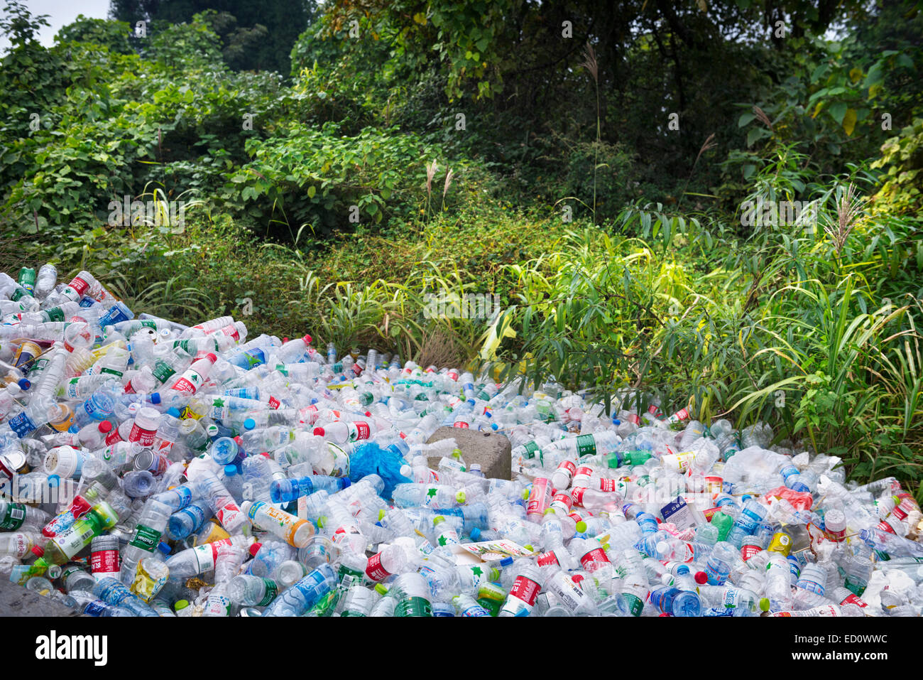 Empty plastic bottles piled up in a park at on of the major tourist attractions in Zhanjiajie, China 2014 Stock Photo