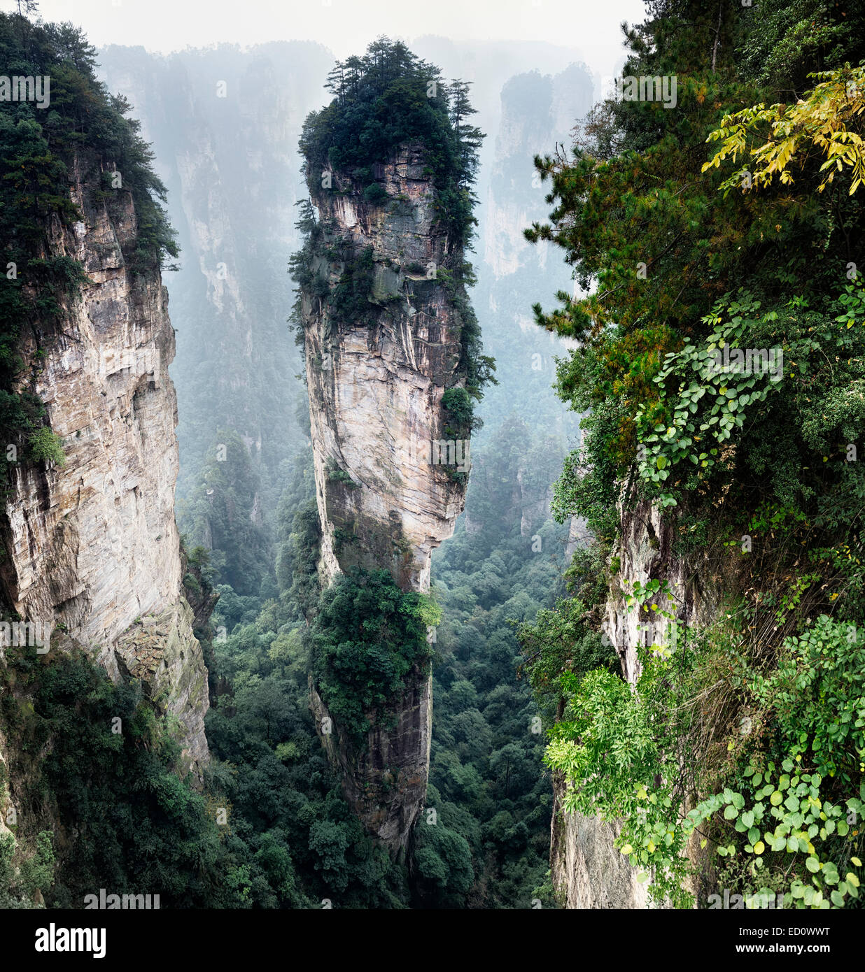 Mountain spire at Zhangjiajie National Forest Park, Zhangjiajie, Hunan, China - Stock Image
