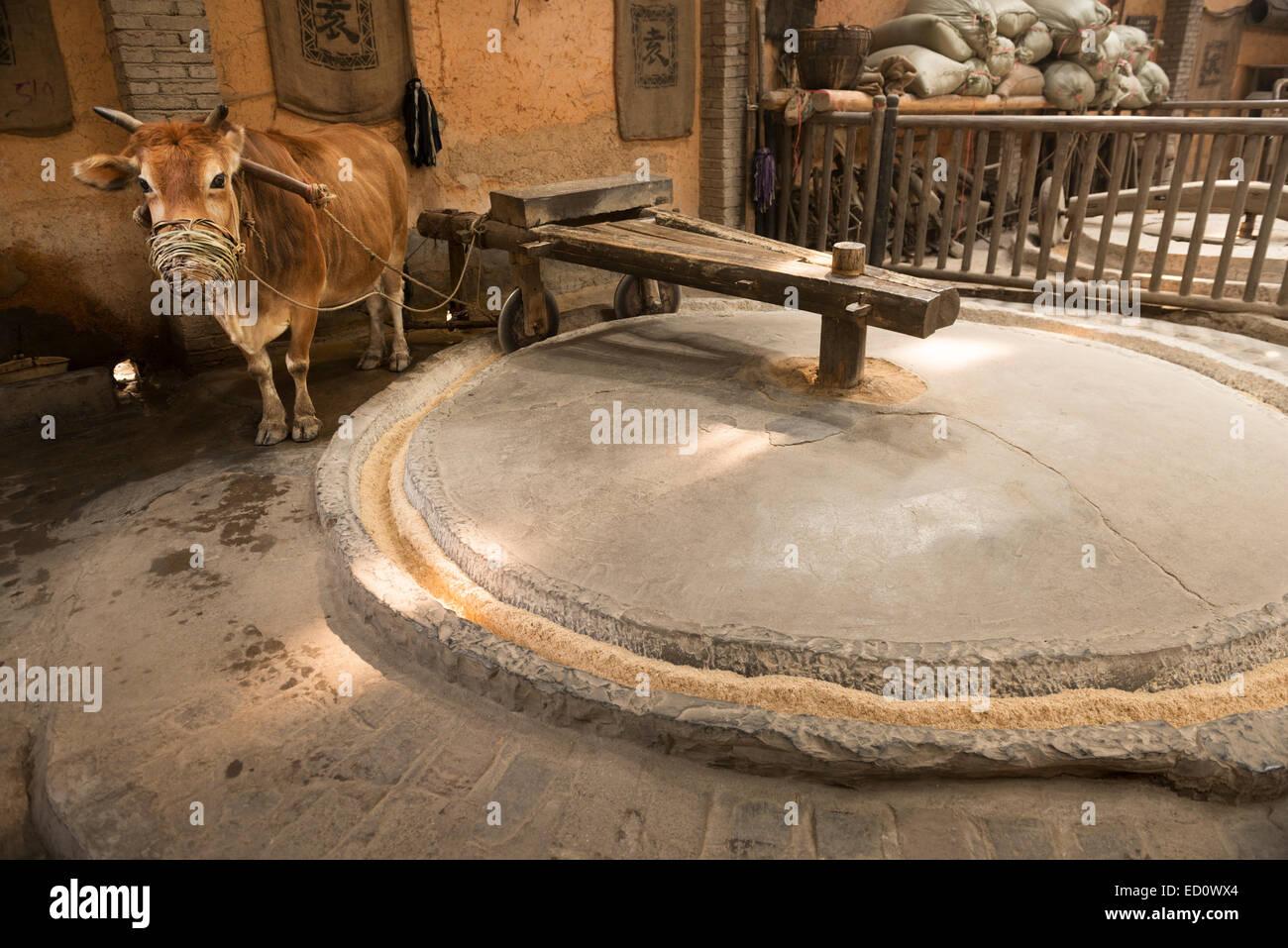 Ox powered grain mill at a rural history museum in Zhangjiajie, Hunan, China - Stock Image