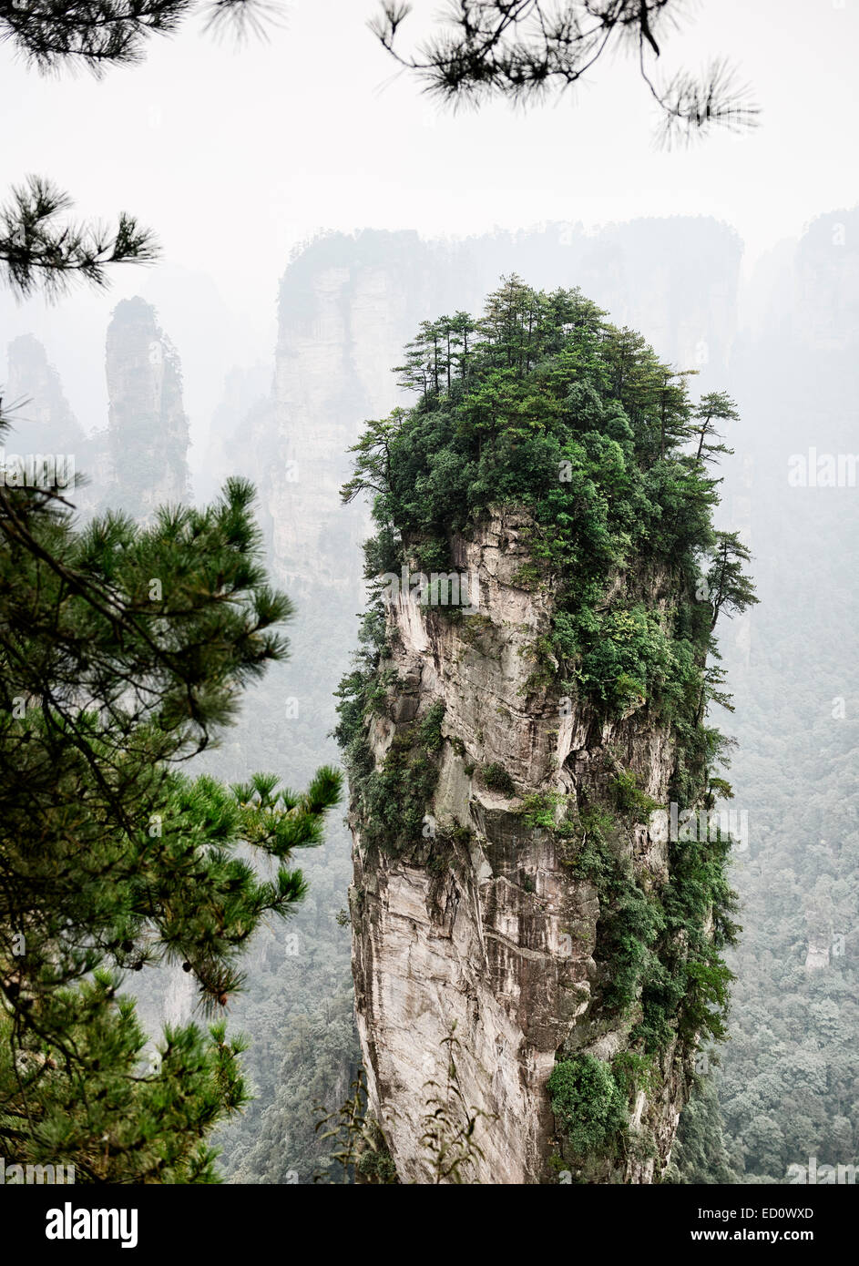Mountain spire at Zhangjiajie National Forest Park, figgy nature scenery, Zhangjiajie, Hunan, China - Stock Image
