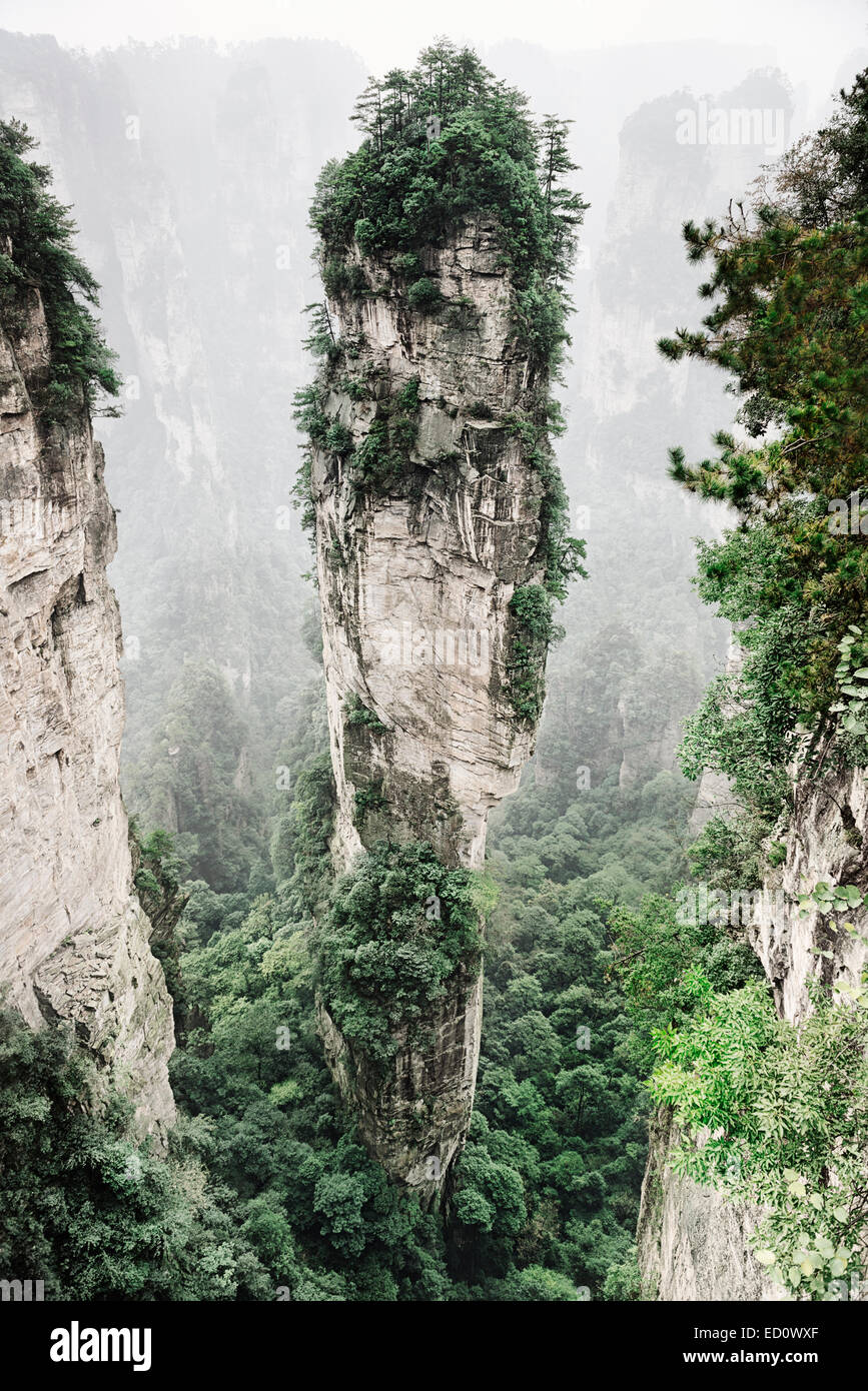 Mountain spire covered in trees at Zhangjiajie National Forest Park, Zhangjiajie, Hunan, China - Stock Image