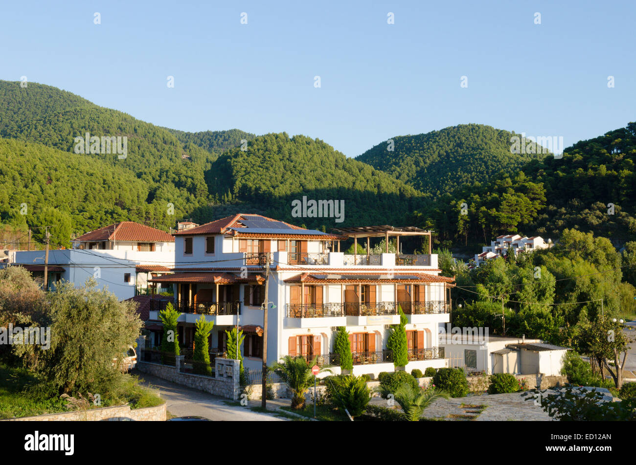 Accommodation blocks in the resort of Elios, Skopelos, Greece. October. Surrounded by Aleppo Pine [Pinus halepensis] - Stock Image