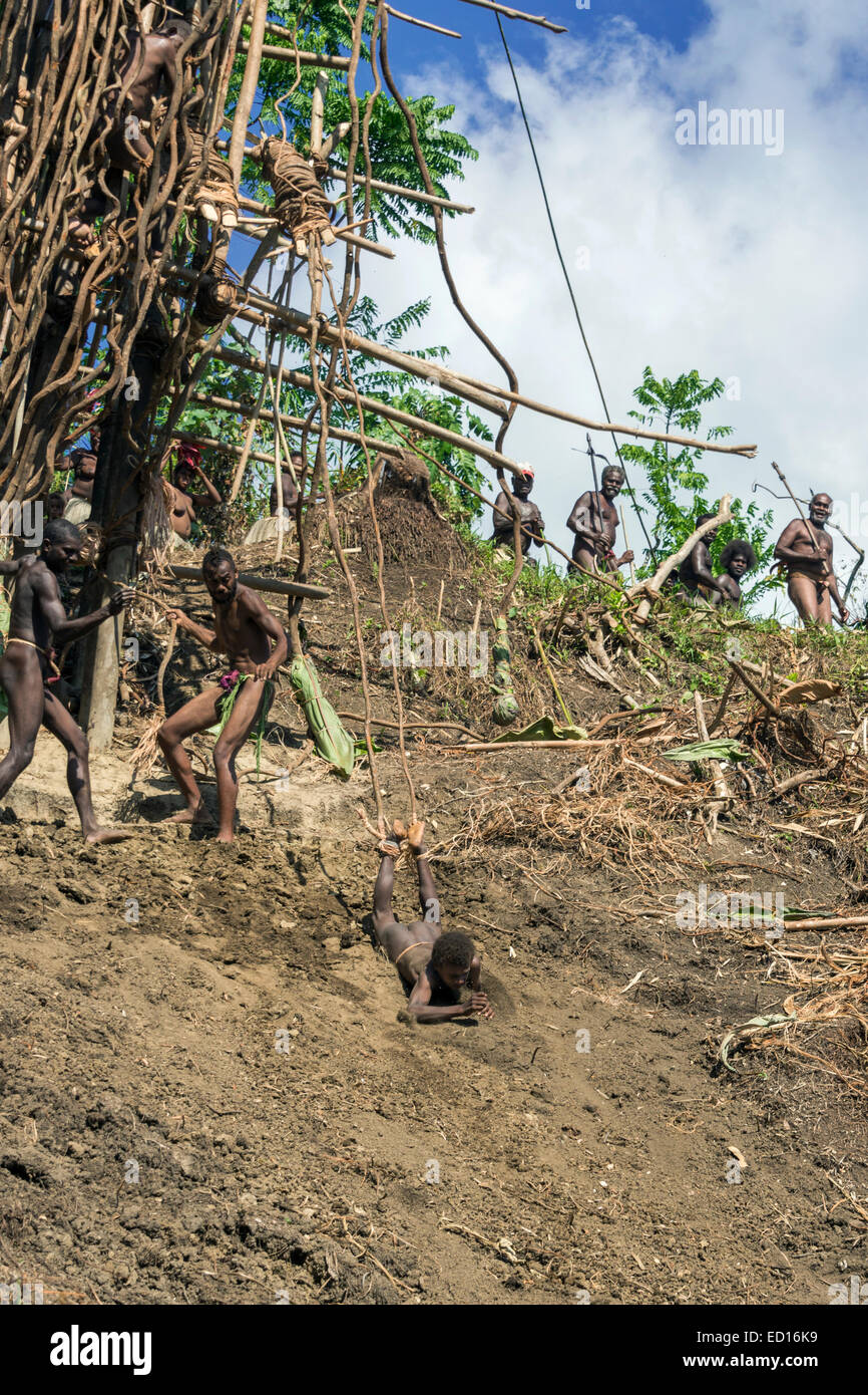 Second boy land diving sequence #7, Pentecost Island, Vanuatu, South Pacific - Stock Image