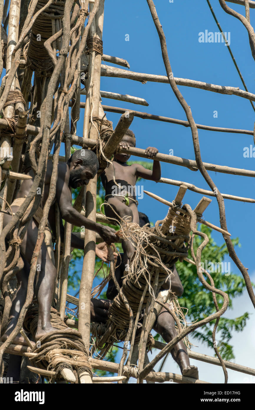 Second boy land diver getting ready to jump, Pentecost Island, Vanuatu, South Pacific - Stock Image