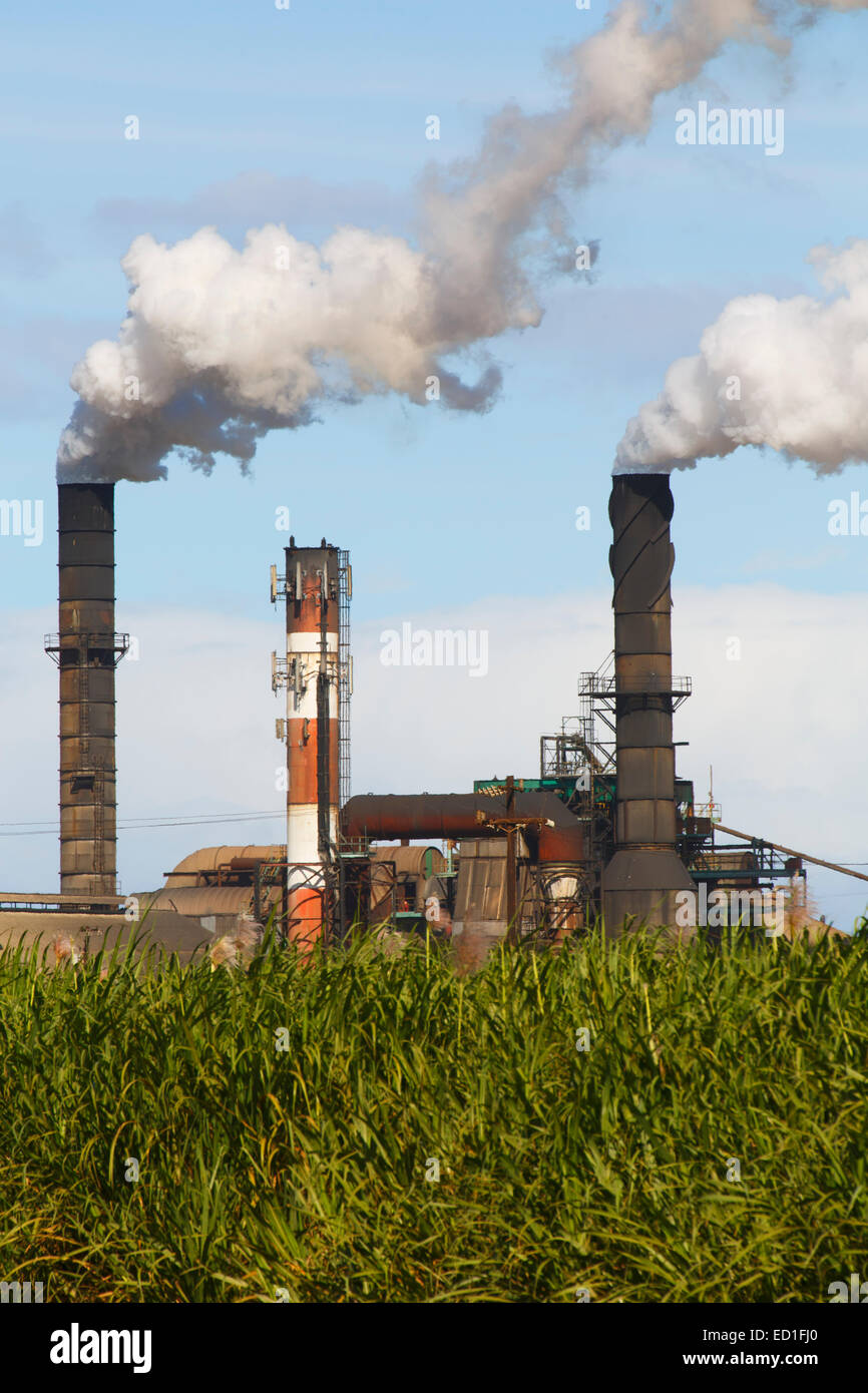 Emissions from Hawaiian Commercial and Sugar plant, Maui, Hawaii. - Stock Image