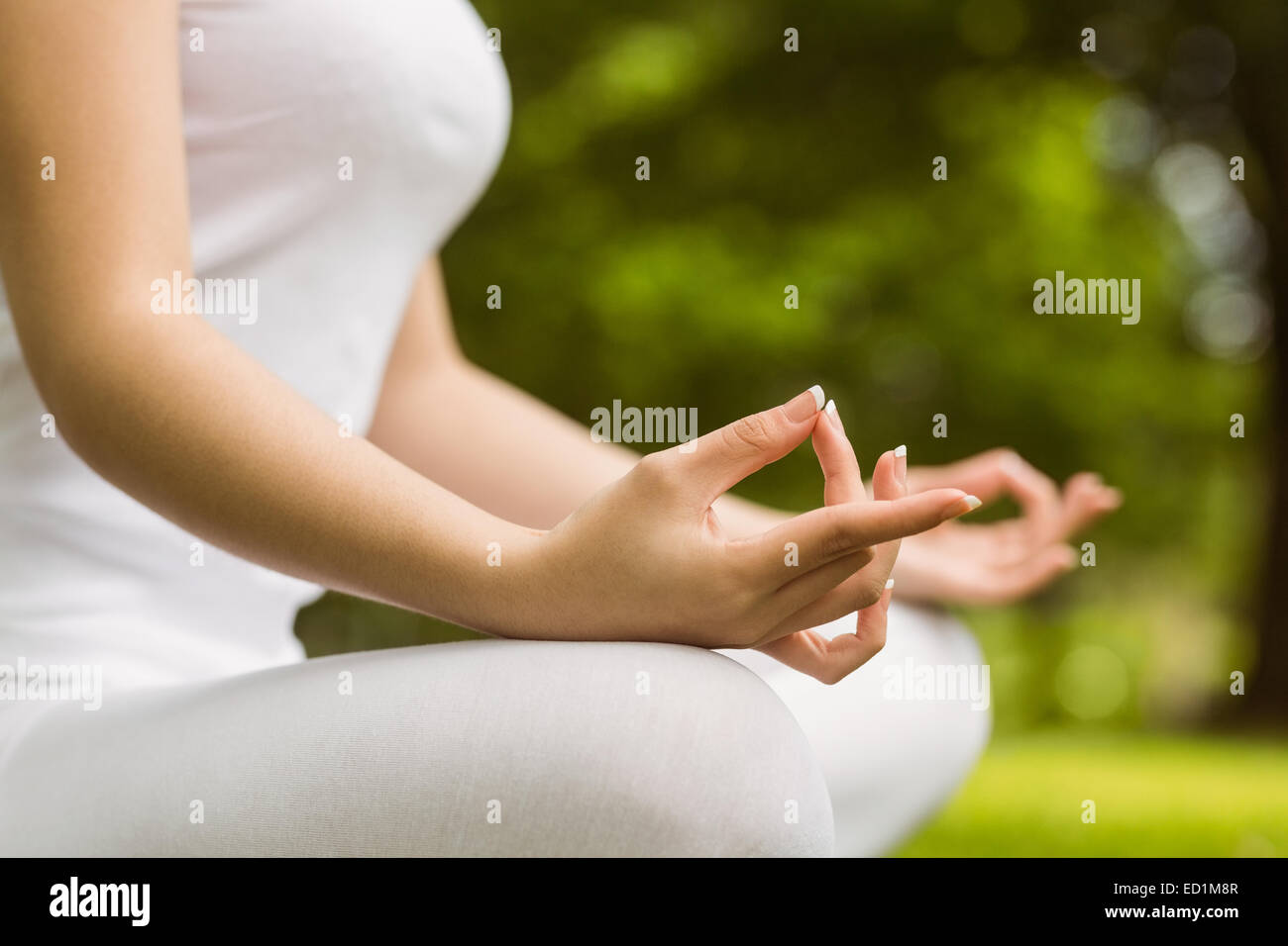Mid section of woman in lotus pose at park - Stock Image