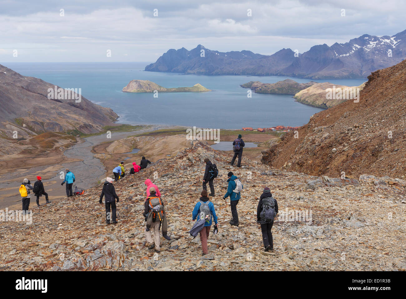 Visitors hike between Fortuna Bay and Stromness, the last portion of Shackleton's famous hike, South Georgia - Stock Image