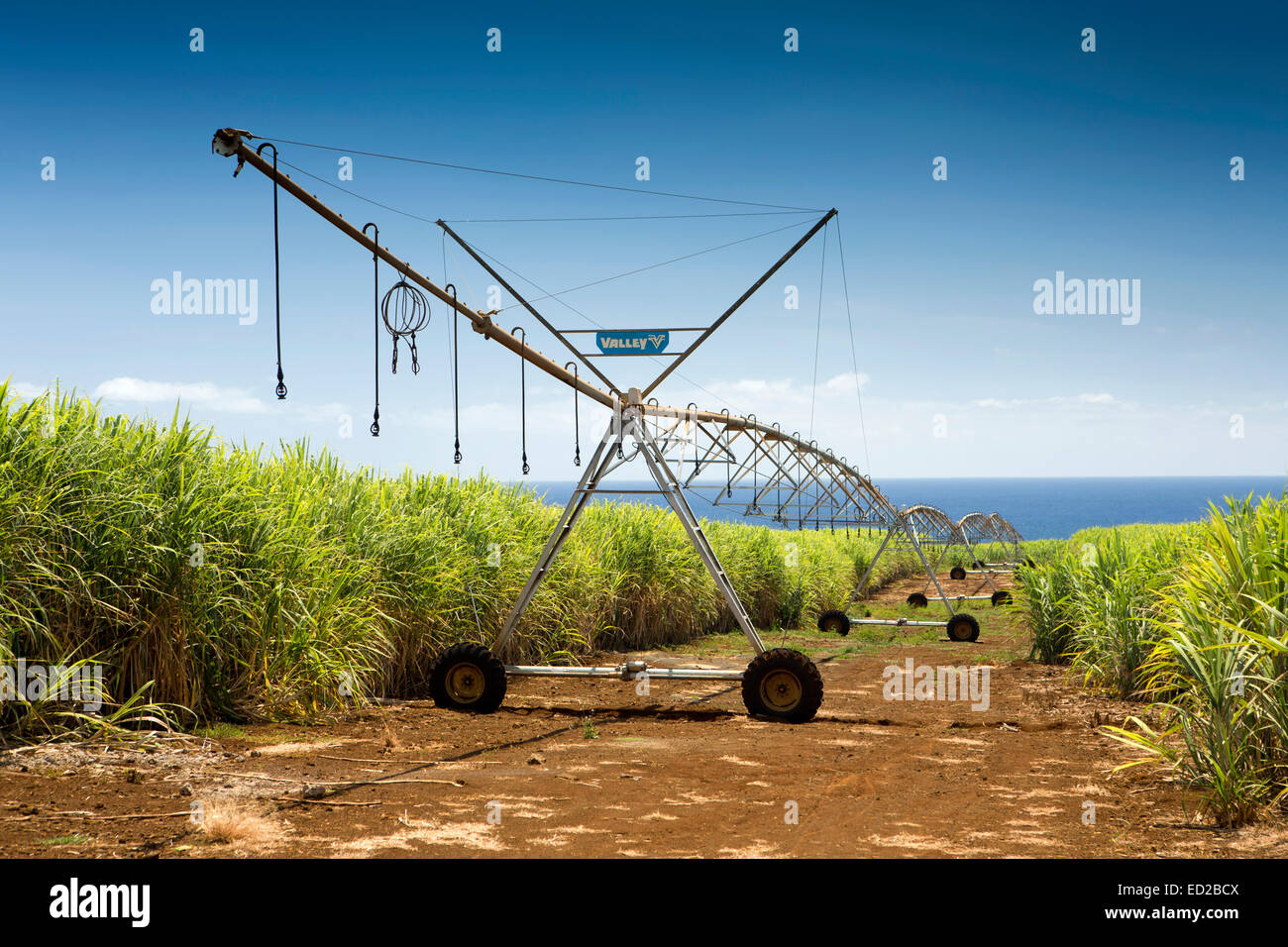 Mauritius, Albion, agriculture, Valley linear crop irrigation machine in sugar cane fields - Stock Image