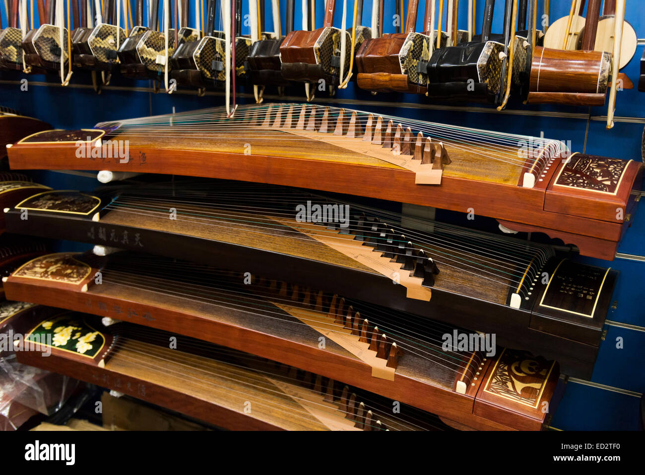 Guzheng, Chinese zither, musical instruments in a store in Shanghai, China. - Stock Image
