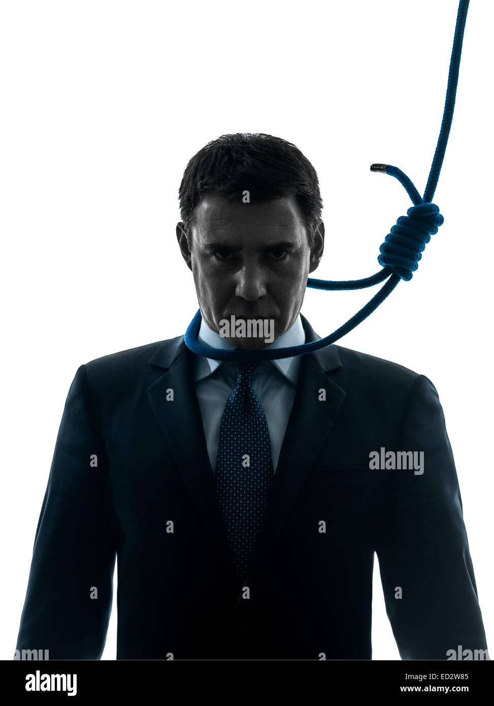 one  business man with hangman noose around the neck in silhouette studio isolated on white background - Stock Image