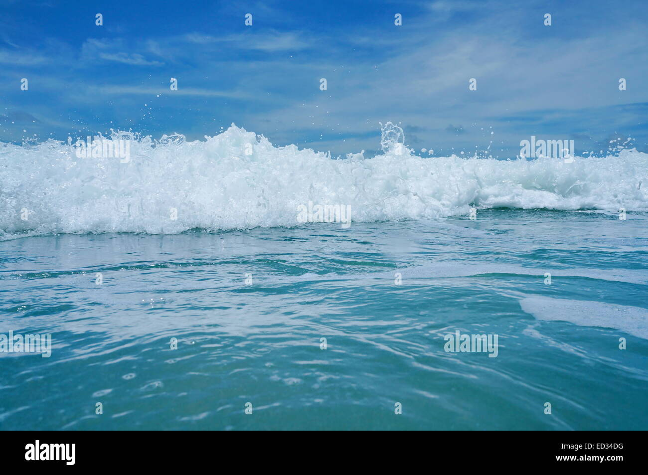 Close up on a breaking wave viewed from the sea surface - Stock Image