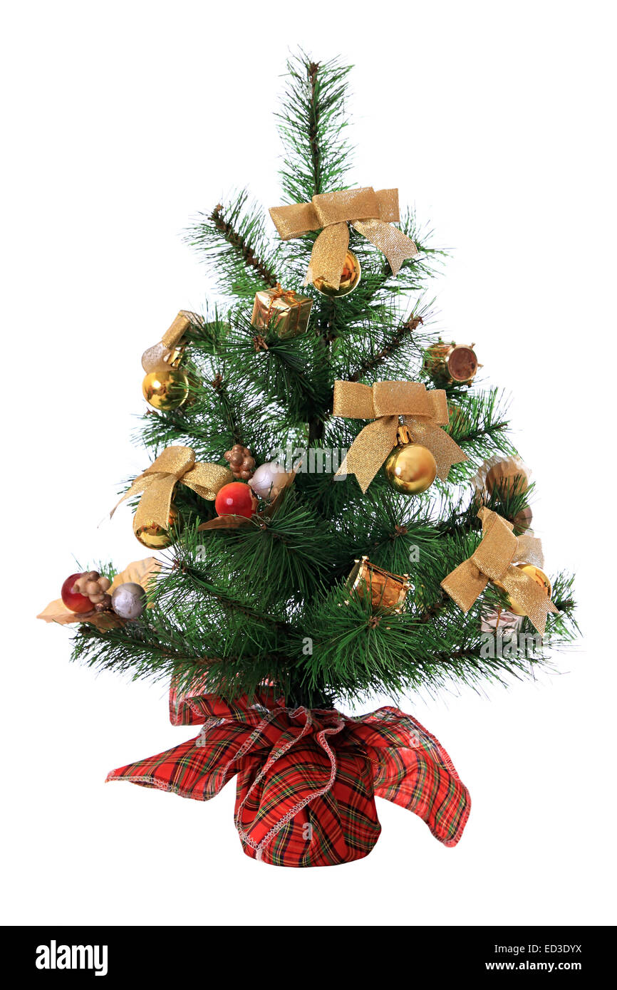 New-year tree - Stock Image