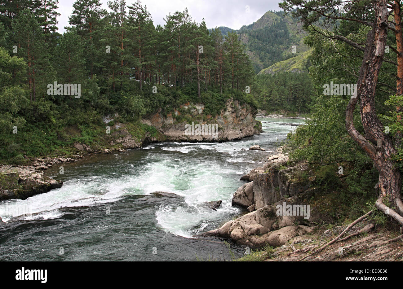 Mountain river of Chemal. - Stock Image