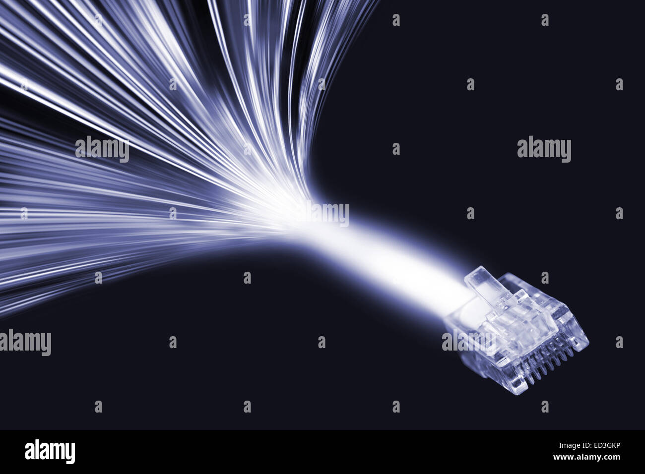 lan cable and data stream in light velocity - Stock Image