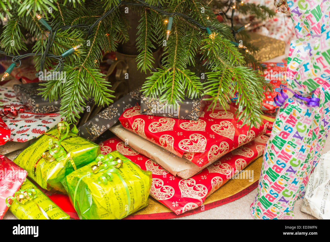 colourful xmas presents under a traditional real christmas tree - Xmas Presents
