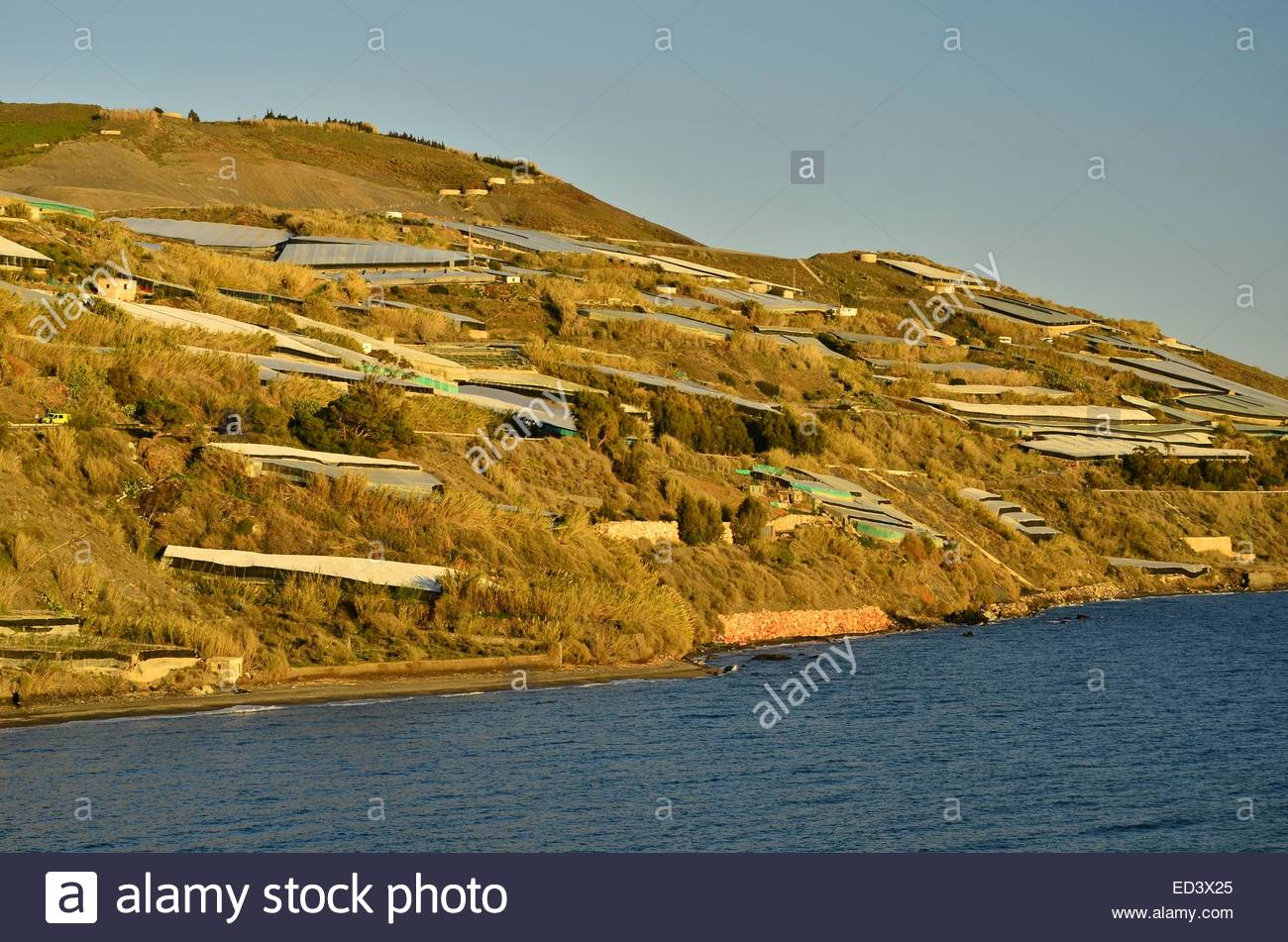Hills covered with greenhouses Costa Tropical Southern Spain Europe - Stock Image