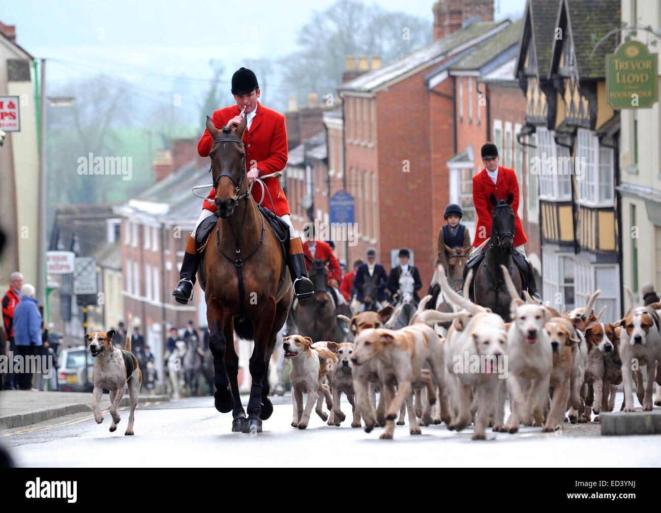 Riders head through town  at The Ludlow Hunt Boxing Day meet at Ludlow Castle - Stock Image