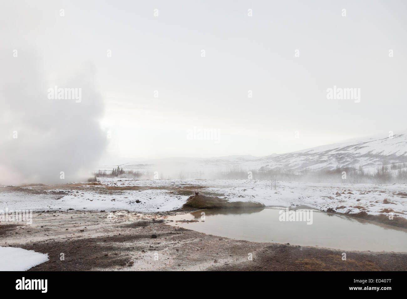 Hot springs in the geothermal area of Haukadalur, Iceland Stock Photo
