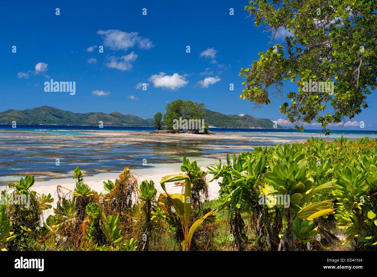Anse Union Beach in La Digue, Seychelles Stock Photo