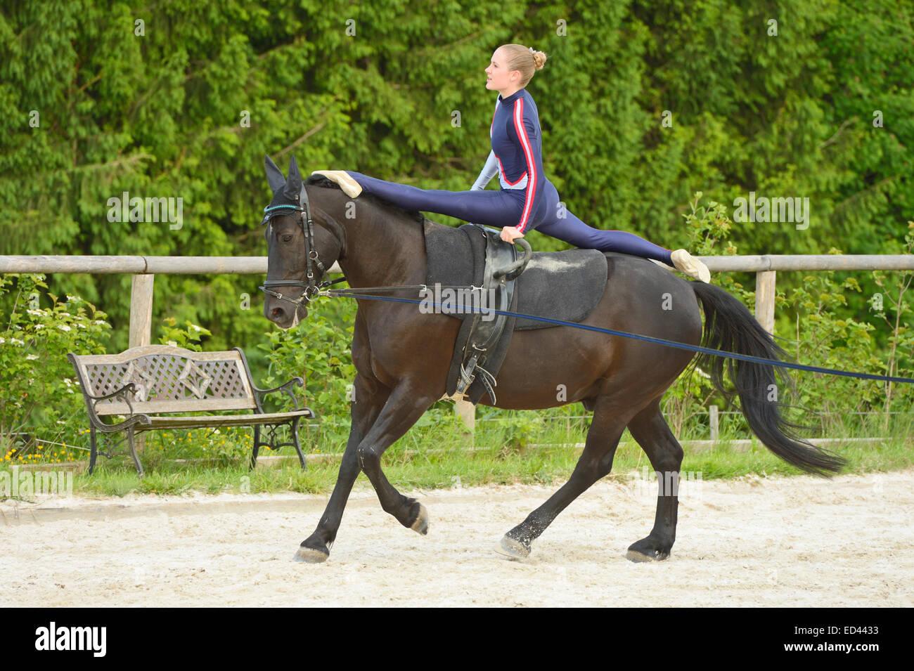 Vaulting, splits on horseback - Stock Image