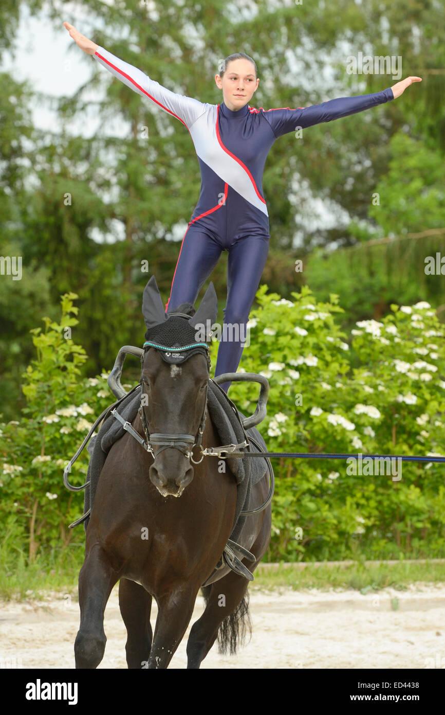 Vaulting compulsory exercise standing on horseback - Stock Image