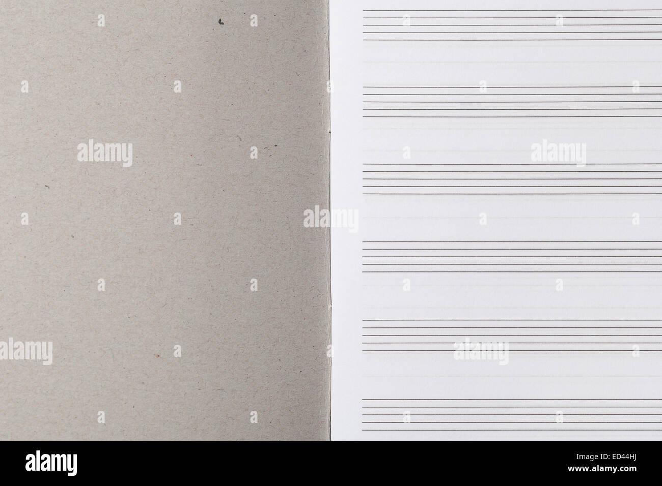 notebook for musical notes with blank sheets with staves