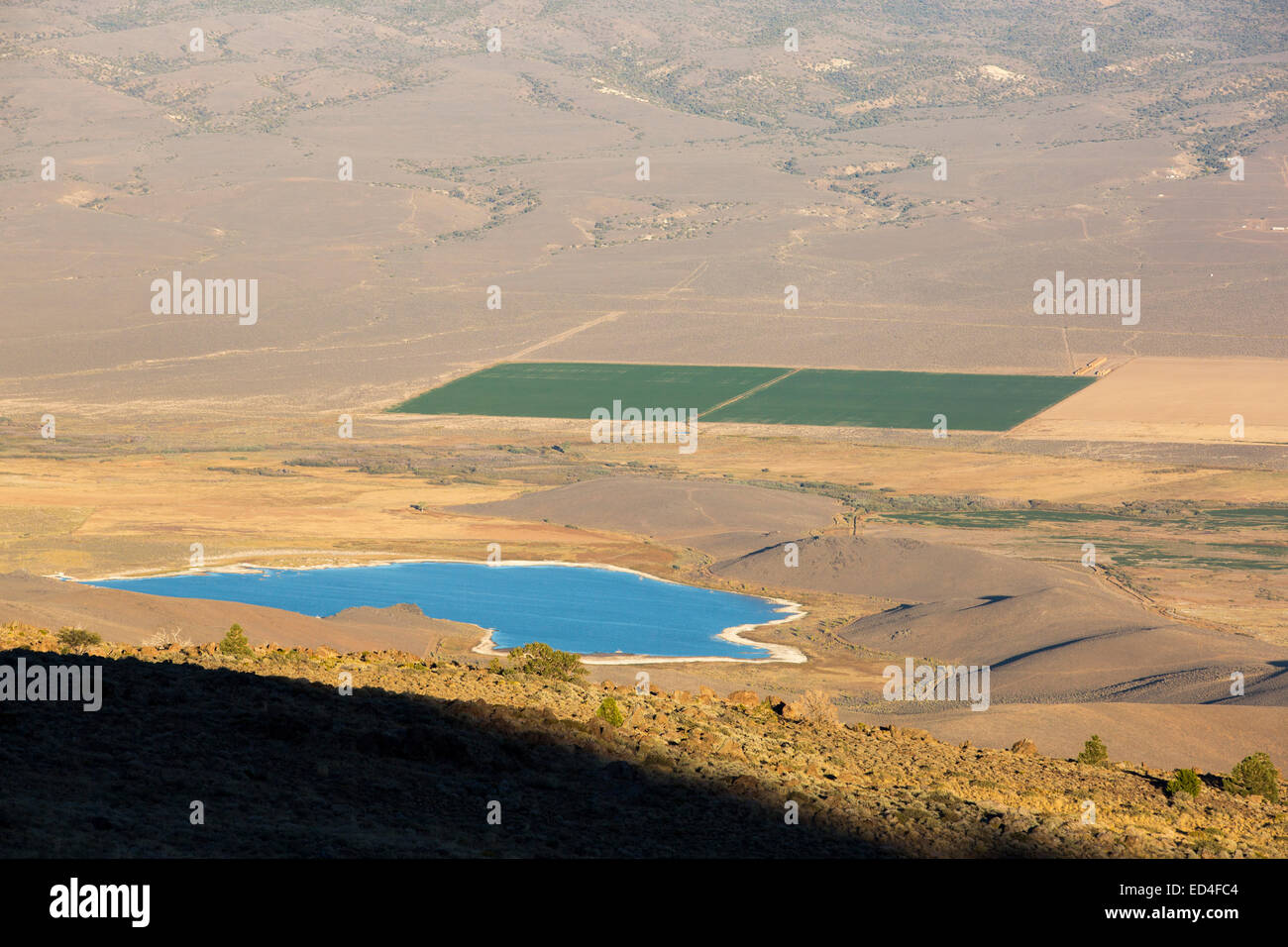 Irrigated crops in the Antelope Valley, California, USA, contrasting strongly with the drought impacted land. Climate - Stock Image