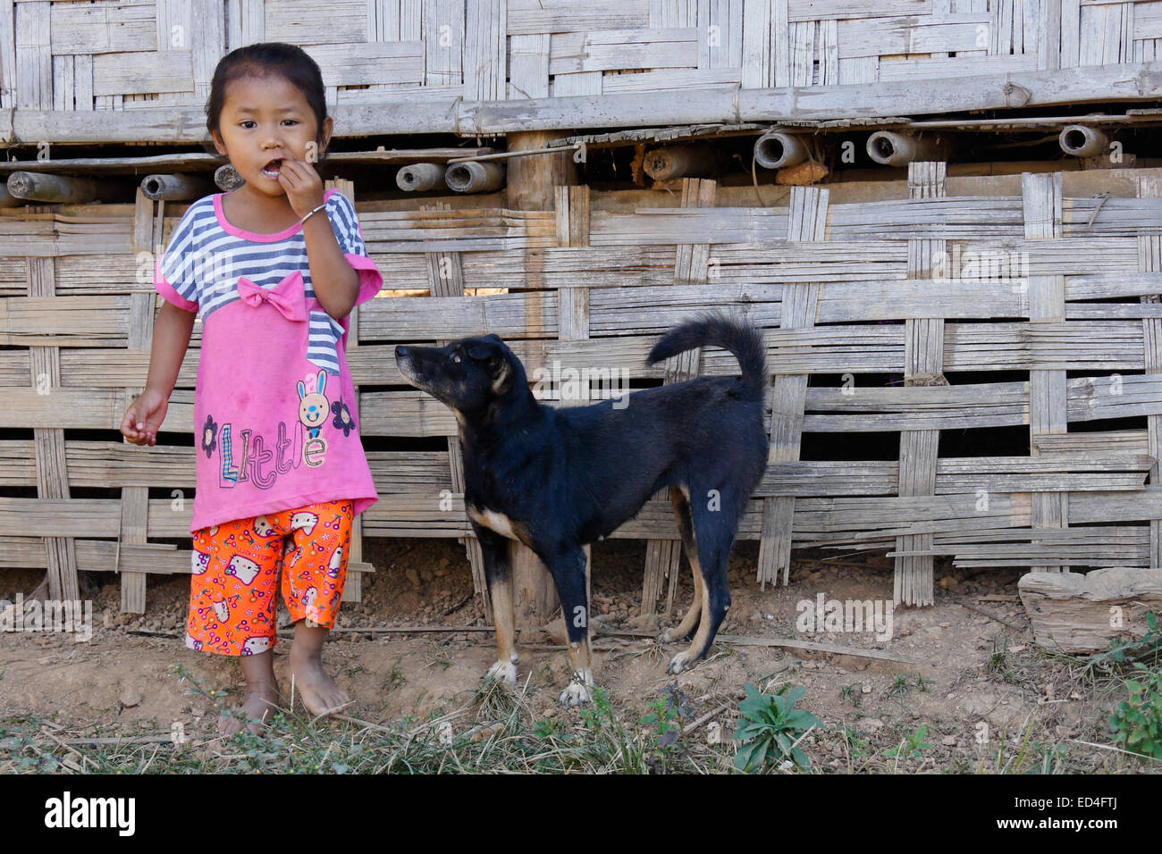 Dog with little girl of Kmou ethnic group, Kiew Mak Nao village, Laos - Stock Image