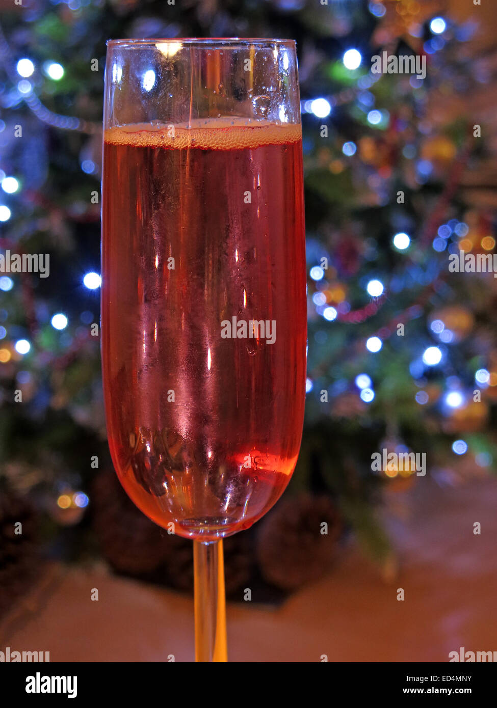 Dangers of festive drinking, one more glass of rose wine at Christmas, in front of tree of decorations - full glass - Stock Image