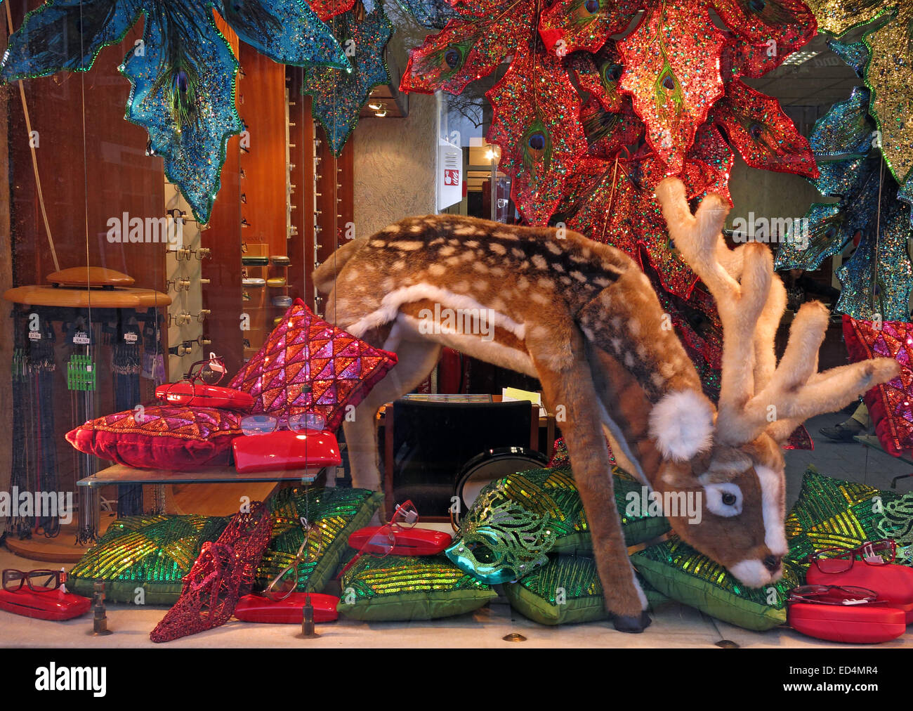 Winter Christmas display in opticians window, Walsall, west midlands, England, UK - Stock Image