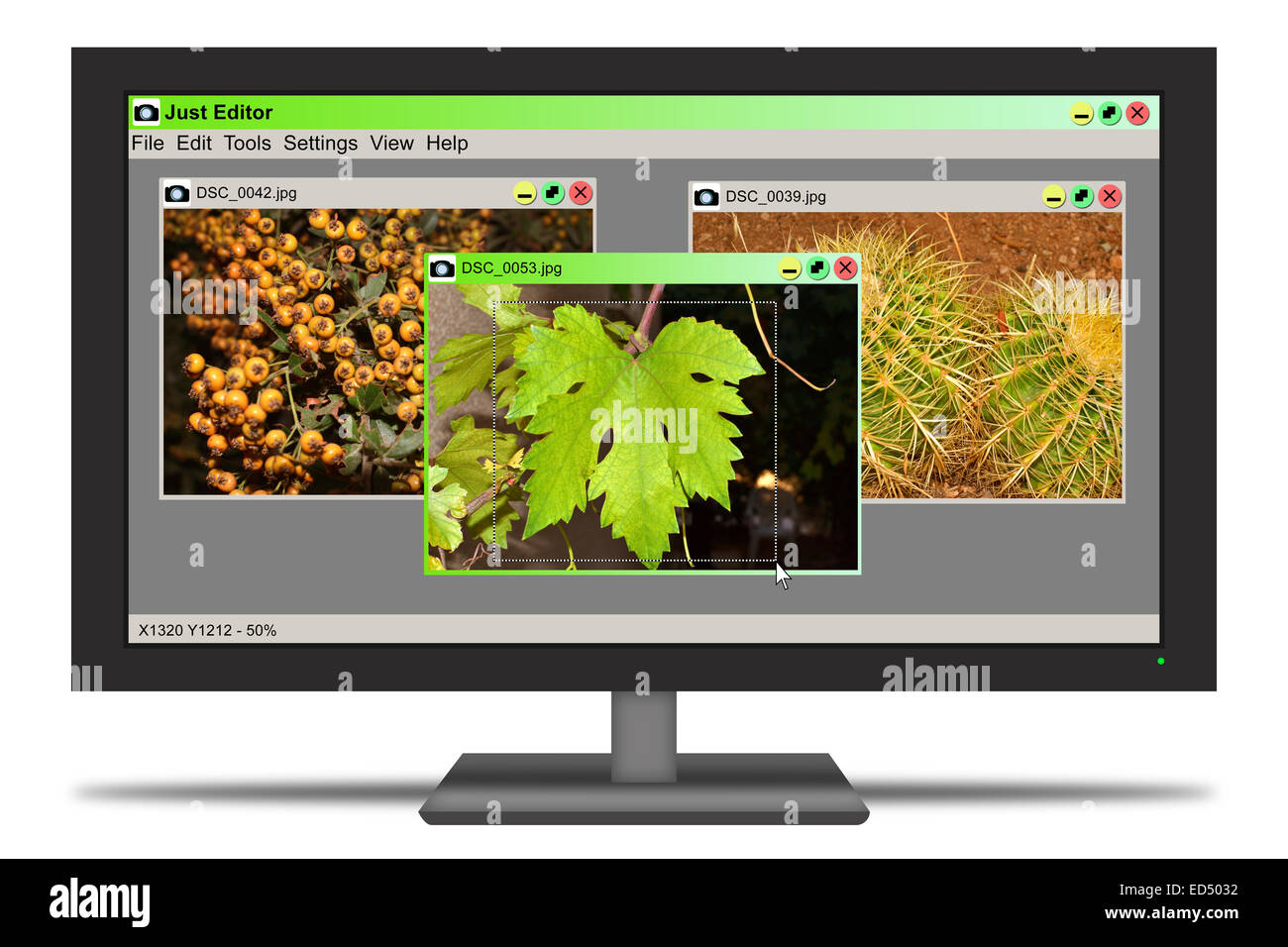 Screen showing a process of editing photos using a photo editor - Stock Image