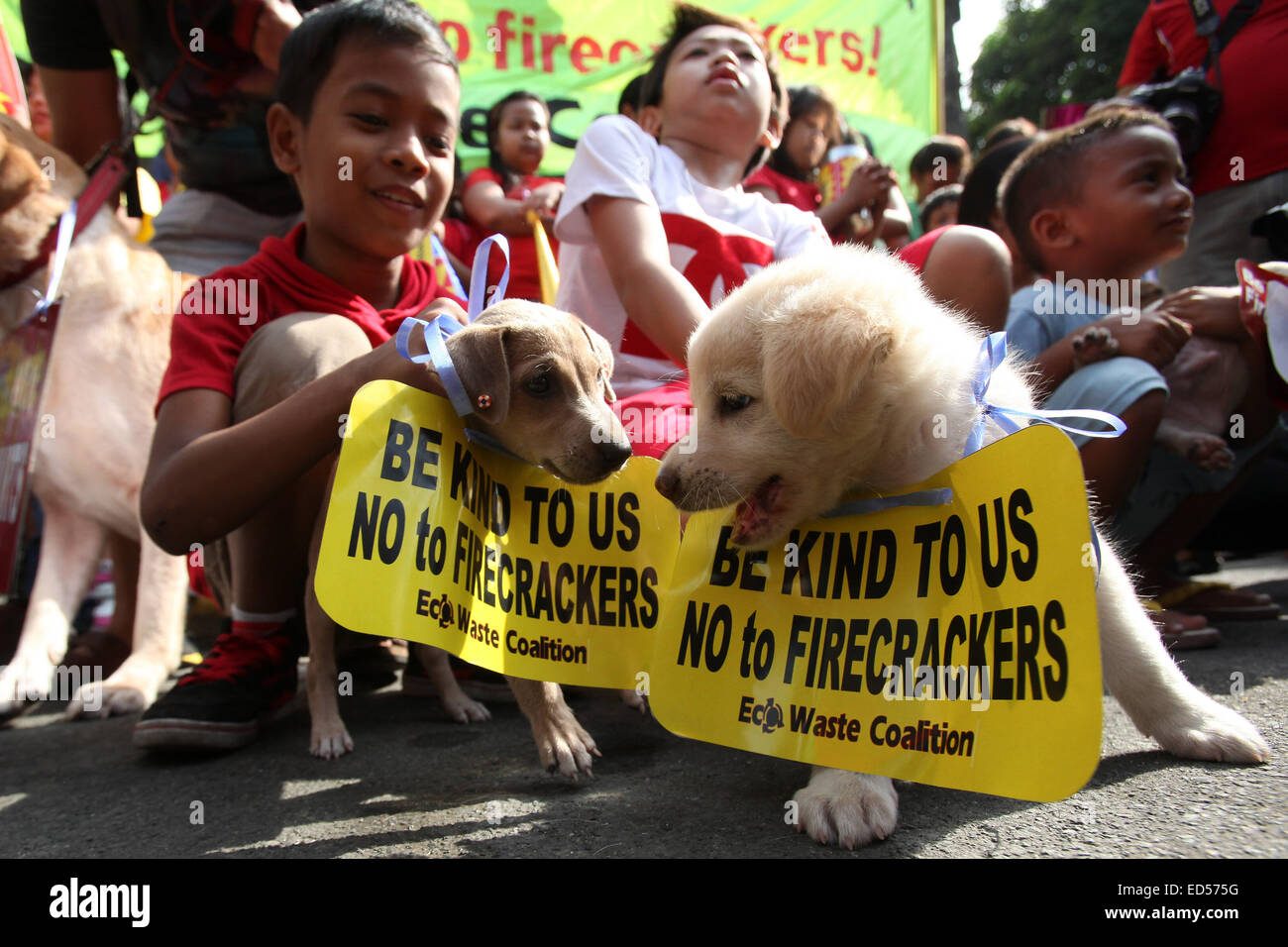 Manila, Philippines. 28th Dec, 2014. Dog owners bring their dogs to attend an anti-firecracker rally in Manila, - Stock Image