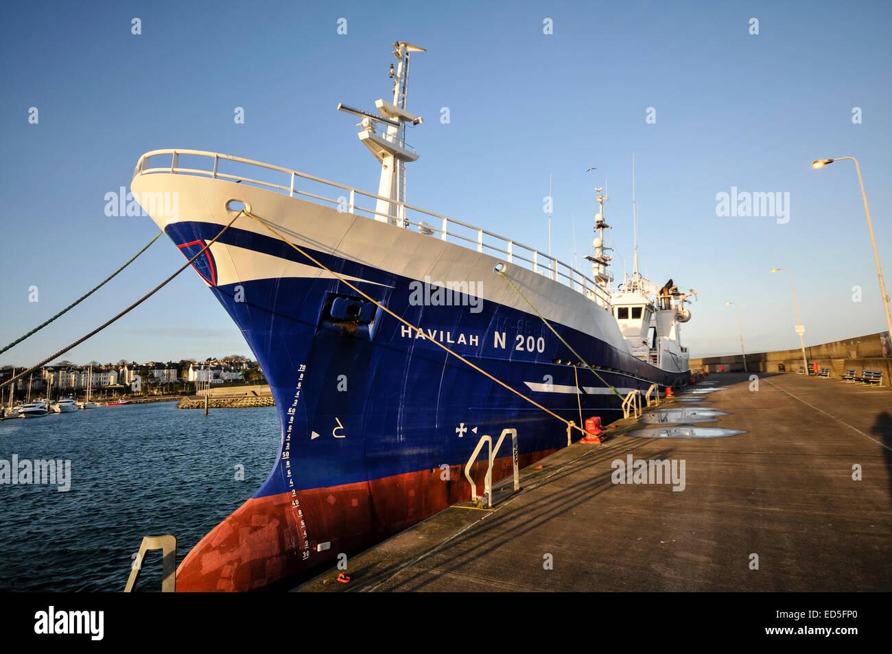 Fishing trawler 'Havilah' (N200), based in Kilkeel, but berthed at Bangor's Eisenhower Pier - Stock Image