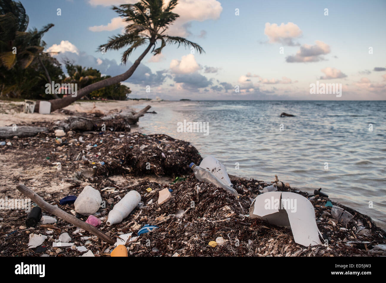 Plastic garbage has washed ashore on a remote island in the Caribbean Sea. Plastic refuse is a major environmental - Stock Image