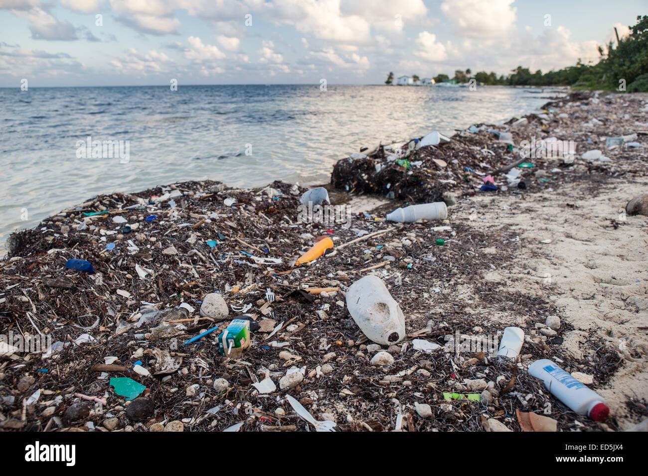 Plastic garbage has washed up on a remote island in the Caribbean Sea. Plastic is an ever-growing environmental - Stock Image