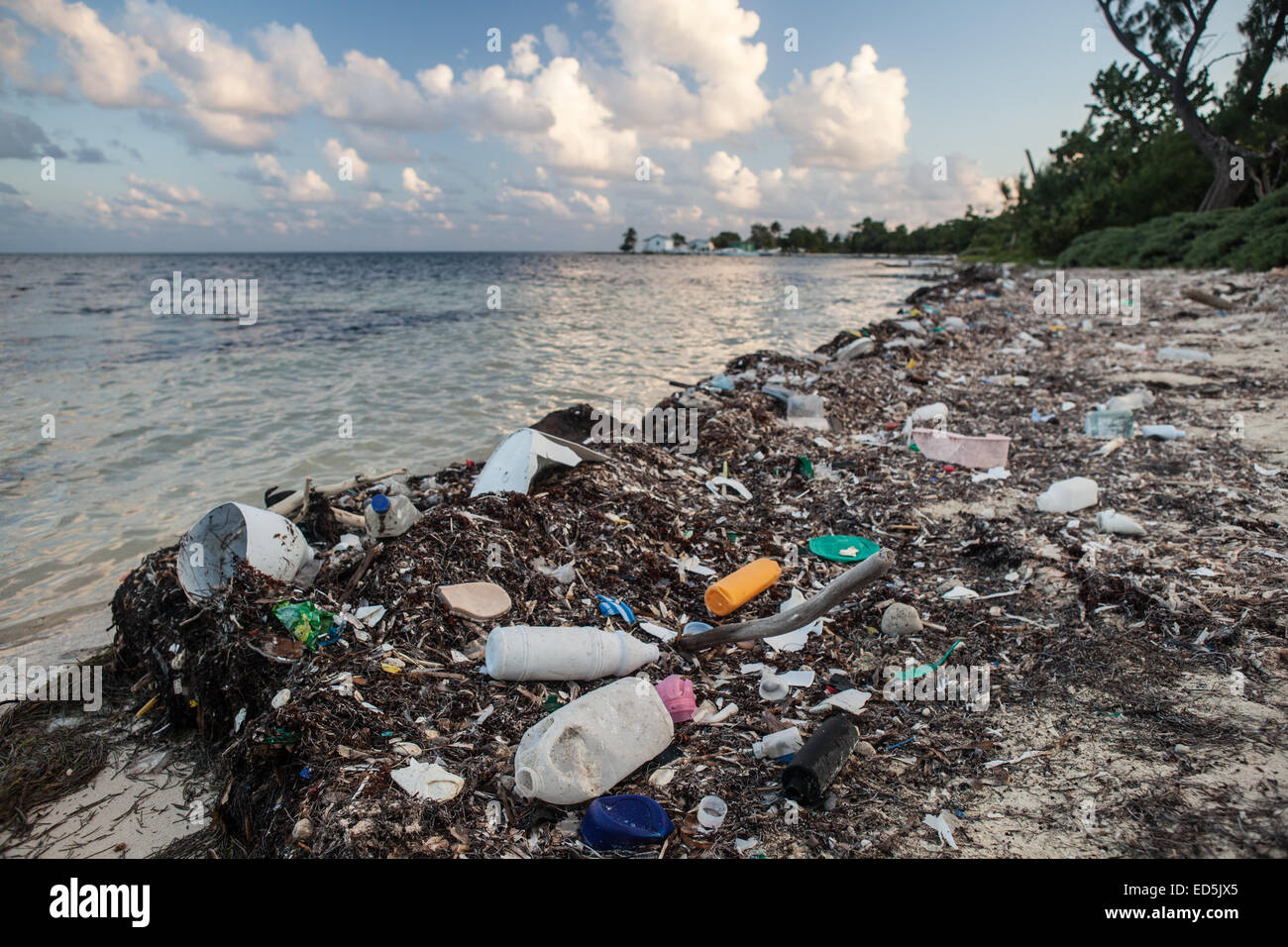 Plastic garbage has washed up on a remote island off the coast of Belize in the Caribbean Sea. - Stock Image