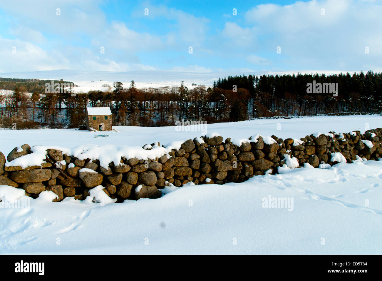 Teesdale under 12' of snow as seen some 8 miles from Middleton in Teesdale in County Durham. Teesdale Canvas. - Stock Image