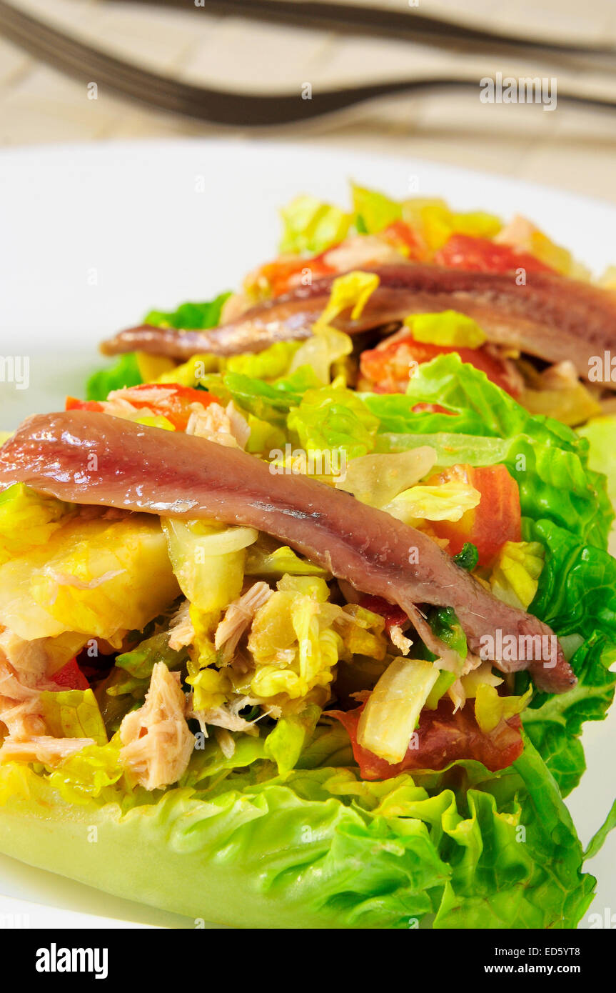 closeup of a plate with a salad made with lettuce hearts, tomato, tuna and pickled anchovies - Stock Image